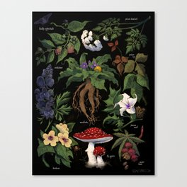 Poison Plants Canvas Print