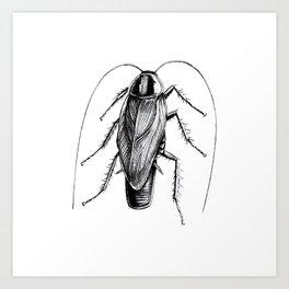 Cockroach Pen Art Drawing Art Print