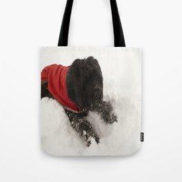 Briard in the Snow Tote Bag
