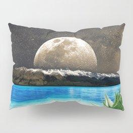 Aloe Vera Moon Beach Pillow Sham