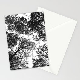 Forest landscape photography trees - black and white 1x1 Stationery Cards