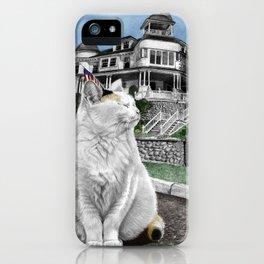 Mackinac Island Cat iPhone Case