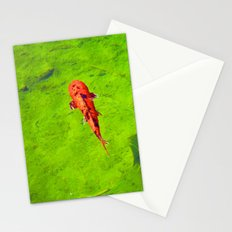 Colorful Catch Stationery Cards