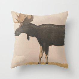 Vintage Illustration of a Moose (1874) Throw Pillow