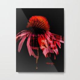 """Echinacea Solo"" Metal Print"