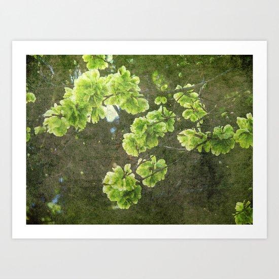 Green blossoms Art Print