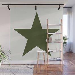 Vintage U.S. Military Star Wall Mural