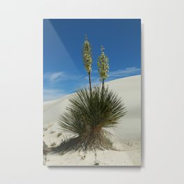 Soap Yucca In The White Sands Dunes Metal Print