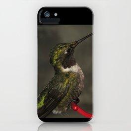 Male hummingbird 14 iPhone Case