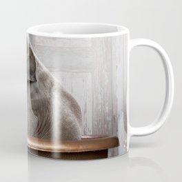 Elephant in Vintage Bathtub Coffee Mug