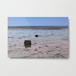 Low tide in cape cod bay Metal Print