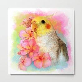 Cockatiel with frangipani  Metal Print