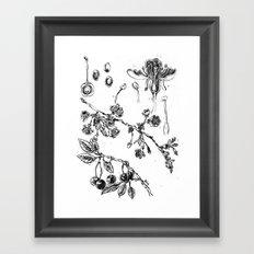 Botanical #CHERRIES Framed Art Print