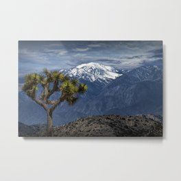 Joshua Tree at Keys View in Joshua Park National Park viewing the Little San Bernardino Mountains Metal Print