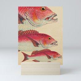 Fish Classic Designs 7 Mini Art Print