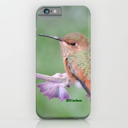 DO NOT Raid My Patch of Sage iPhone Case