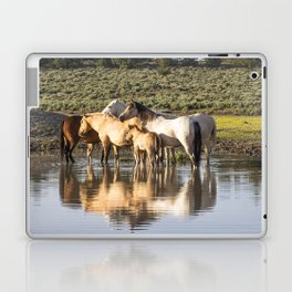 Reflection of a Mustang Family Laptop & iPad Skin