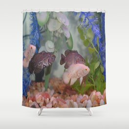 Two Black and Two White Oscars in an Aquarium Shower Curtain