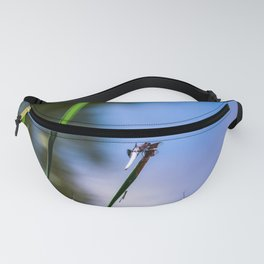 Dragonflies Fanny Pack