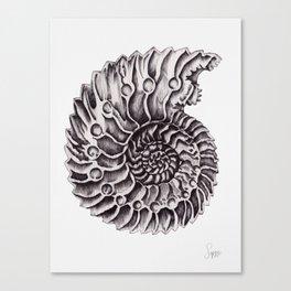 Ammonite III Canvas Print