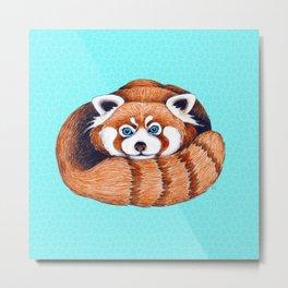 Cute Red Panda Bear On Turquoise Metal Print