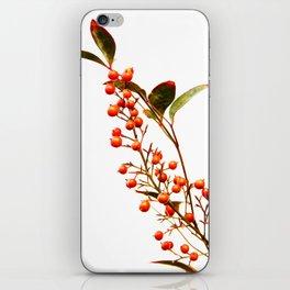 A Fruitful Life iPhone Skin