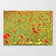 wild flower garden Canvas Print