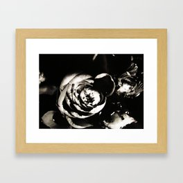 Stop and Smell Me Framed Art Print