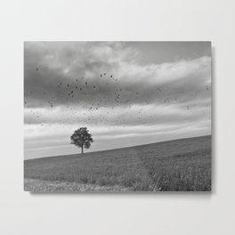 Tree, Hill, Birds... Metal Print