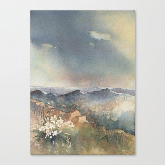 Desert Poppy Canvas Print