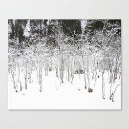 Snow Tales #2 Canvas Print
