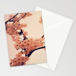 Mikado Stationery Cards