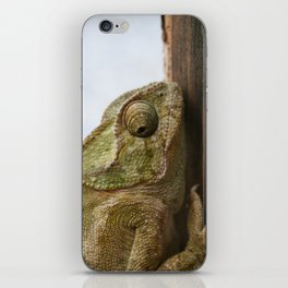 Close Up Of A Wild Green Chameleon iPhone Skin