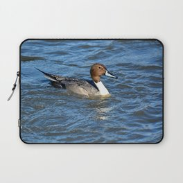 Northern Pintail Duck Laptop Sleeve