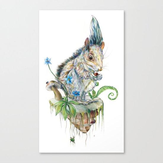 Squirrel Island Canvas Print