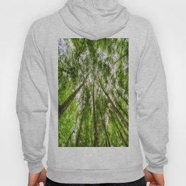 The Ancient Tree Canopy Hoody