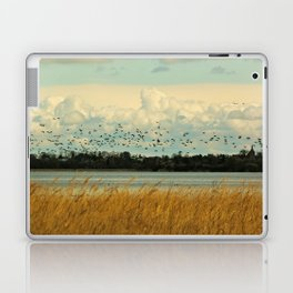Birds by the Dessower Sea in Mecklenburg Vorpommern East Germany Laptop & iPad Skin