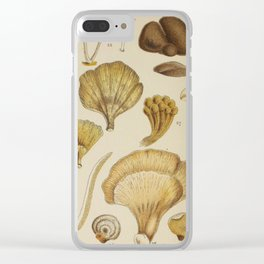 Naturalist Mushrooms Clear iPhone Case