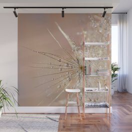 Dandelion with raindrops Wall Mural