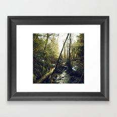 Lumière de solstice  Framed Art Print