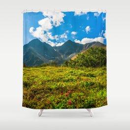 Vicinity of the volcano Vachkazhets Shower Curtain