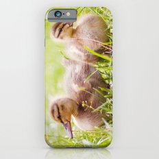 Alle meine Entchen Slim Case iPhone 6s
