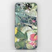 cacti iPhone & iPod Skins featuring CACTI by Beth Hoeckel