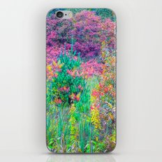 A Walk Among the Colors V iPhone & iPod Skin