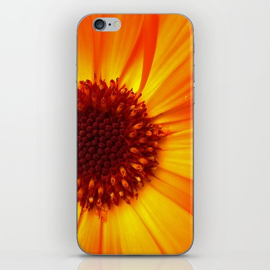 marigold macro iPhone & iPod Skin