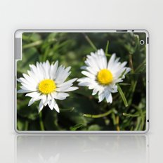 wild white daisy flowers. floral photography. Laptop & iPad Skin