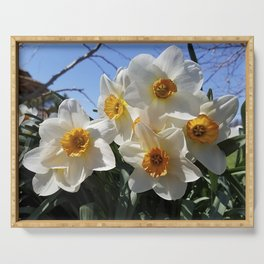 Sunny Faces of Spring - Gold and White Narcissus Flowers Serving Tray