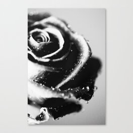 Rose BW Canvas Print
