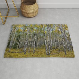Trembling Aspen's in the Fall, Jasper National Park Rug