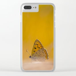 """Butterfly """"Lycaena alciphron"""" on sunny day Clear iPhone Case"""